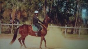 mounted 3